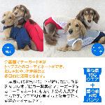 25/繝ュ繧、繝、繝ォ繝悶Ν繝シ
