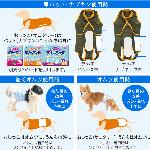 3/繝ャ繝�繝�