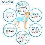 7/繝悶Ν繝シ