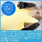 蝠�蜩∫判蜒�11
