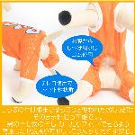 蝠�蜩∫判蜒�6