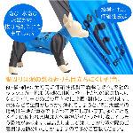 蝠�蜩∫判蜒�9