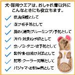 蝠�蜩∫判蜒�12